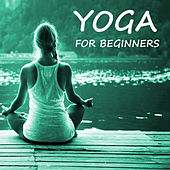 Yoga For Beginners by Various Artists