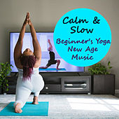 Calm & Slow Beginner's Yoga New Age Music by Various Artists