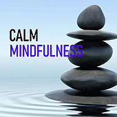 Calm Mindfulness by Various Artists