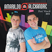 Foi Você de Amarildo e Alexandre