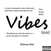 Vibes Volume 2 by Skinny Sosa