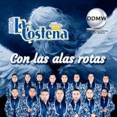Con las Alas Rotas by Banda La Costeña