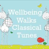 Wellbeing Walks Classical Tunes de Various Artists