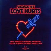 Love Hurts de Sharam Jey