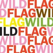 Future Crimes B/W Glass Tambourine by Wild Flag