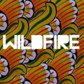 Wildfire by SBTRKT