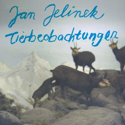 Tierbeobachtungen by Jan Jelinek