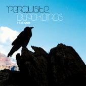 Blackbirds by Perquisite