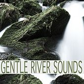 Gentle River Sounds by Nature Sounds (1)