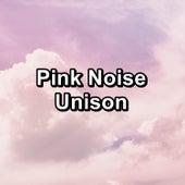 Pink Noise Unison de Baby Sleep Sleep