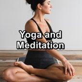Yoga and Meditation de Nature Sounds (1)