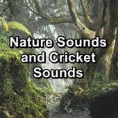 Nature Sounds and Cricket Sounds de Nature Sound Collection