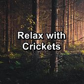 Relax with Crickets de Nature Sound Collection