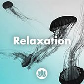 Relaxation by Various Artists