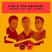 Never Let Me Down di Vize
