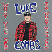 What You See Is What You Get von Luke Combs
