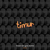 Won't Let You Down (Demo) de Timur