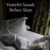 Peaceful Sounds Before Sleep by Various Artists