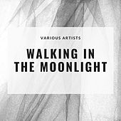 Walking In the Moonlight by Various Artists
