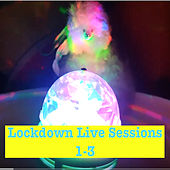 Lockdown Sessions 1-3 von Fukushima Dolphin