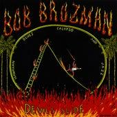 Devil's Slide by Bob Brozman