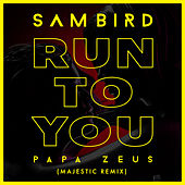 Run To You (Majestic Remix) von Sam Bird