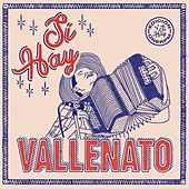 Sí Hay Vallenato de Various Artists