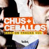 Back On Tracks Vol. 2 de Various Artists