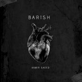 Barish von Aamir Saeed