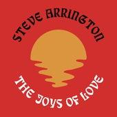 The Joys Of Love by Steve Arrington