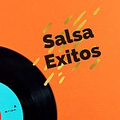 Salsa Exitos de Andy Montanez, Anthony Cruz, Eddie Santiago, El Gran Combo De Puerto Rico, Frankie Ruiz