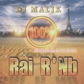 Dj Malik, 100% Rai R'Nb, 30 titres originaux enchaînés de Dj Malik
