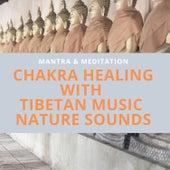 Chakra Healing with Tibetan Music, Nature Sounds de Mantra