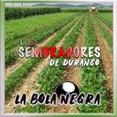 La Bola Negra (En Vivo) de Los Sembradores de Durango