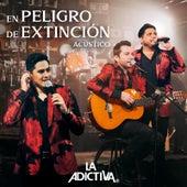 En Peligro De Extinción (Versión Acústica) de La Adictiva Banda San Jose de Mesillas