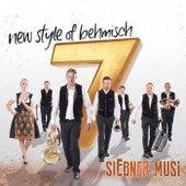 New Style Of Behmisch de siEbner Musi