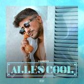 Alles Cool by Fero47