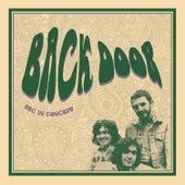 Walking Blues (Live) von Back Door