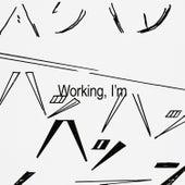 Working, I'm by Sam Tiba