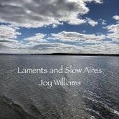 Laments and Slow Aires Joy Williams van Joy Williams