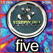 Steppin' out Records Five - Hard House de Various Artists