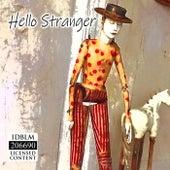 Hello Stranger de Rick Tobey
