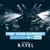 Find Your Harmony Radioshow #202 von Andrew Rayel