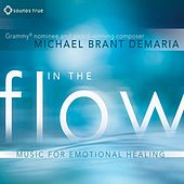 In The Flow di Michael Brant Demaria