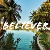 Believer van Ludvic