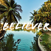 Believer de Ludvic