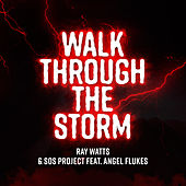 Walk Through the Storm by Ray Watts