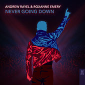 Never Going Down von Andrew Rayel