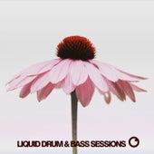 Liquid Drum & Bass Sessions 2020 Vol 10 von Various Artists