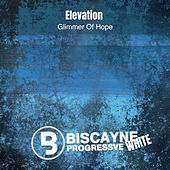 Glimmer of Hope by Elevation